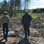 4th Anniversary of the Unfair and Damaging Forestry Plan