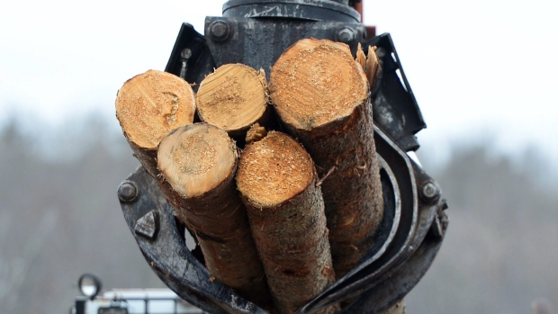 N.B. trade minister got things wrong on softwood lumber, says woodlot group – CBC News – 6 July 2017
